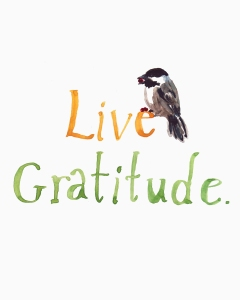 Gratitude_SmFile[1]