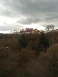 A late fall vista