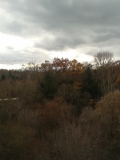 A late fall vista